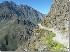 Colca Canyon 033