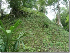 Tikal 098
