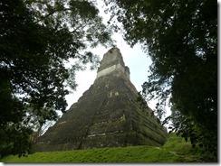 Tikal 101