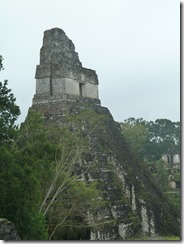 Tikal 115
