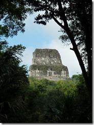 Tikal 156