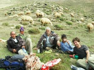 Pause mit einigen Hirten und vielen Schafen