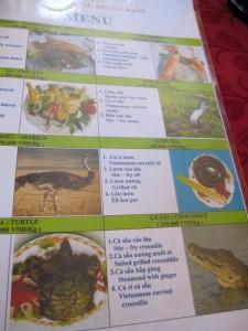 Strauß, Schlange, Schildkröte, Kroko - alles was das Herz (nicht) begehrt!