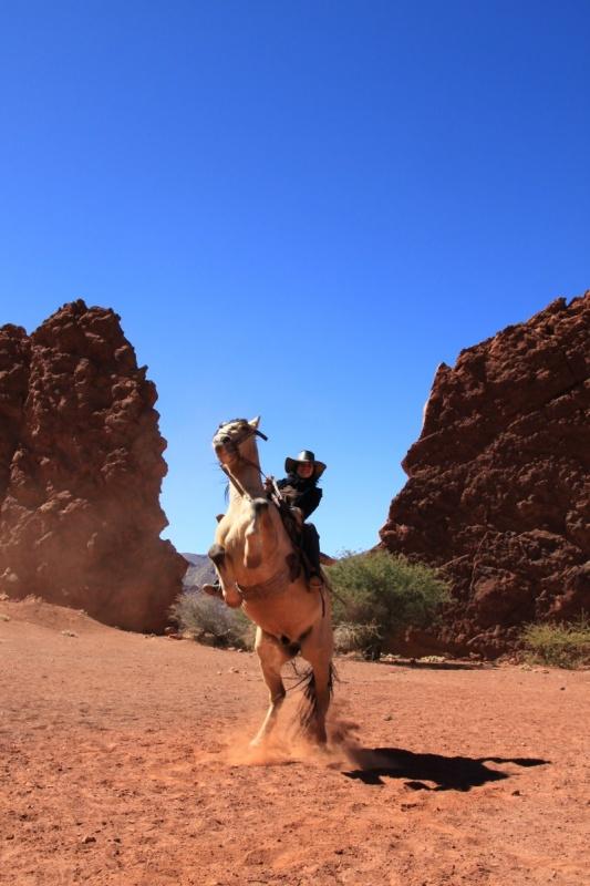 CiL auf dem Pferd