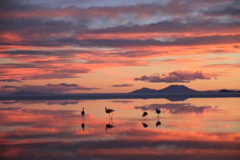 Sonnenuntergang über der Salzwüste mit Spiegelung im Salzwasser