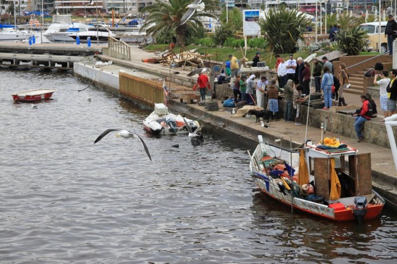 Hafen von Punta del Este, Uruguay