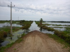 Sackgasse im Pantanal...80km zurück!!