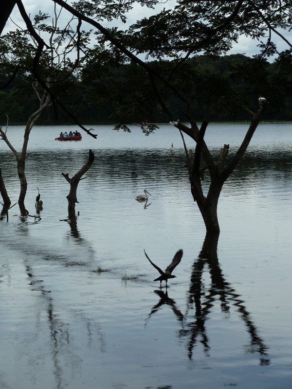 Impression vom Naranji Lake Nature Park