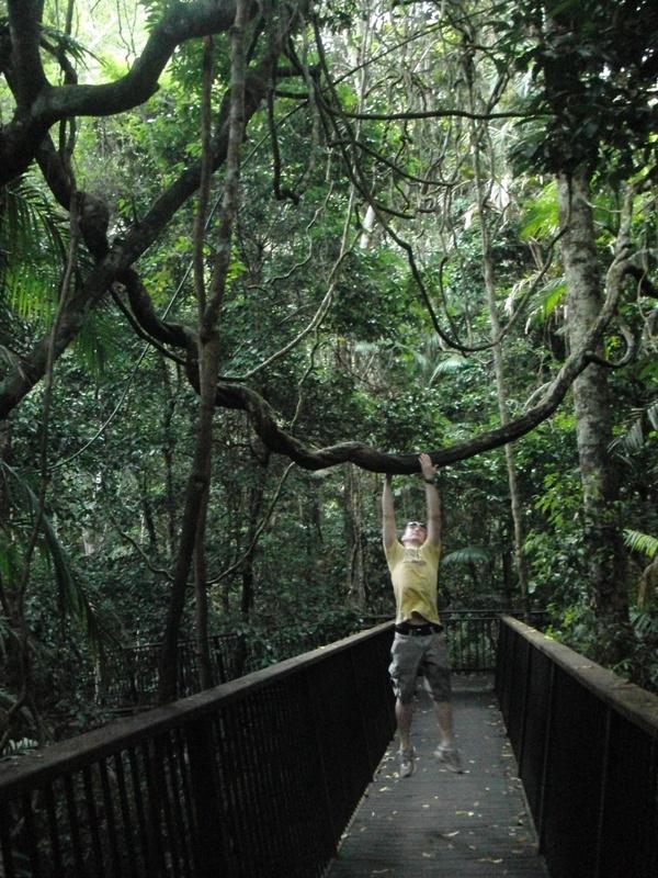 Tarzan des 21. Jhd.