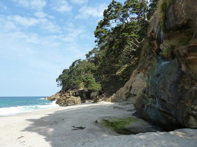 Wanderung an der Kueste entlang zu einsamen Straenden (Start bei Waihi Beach)