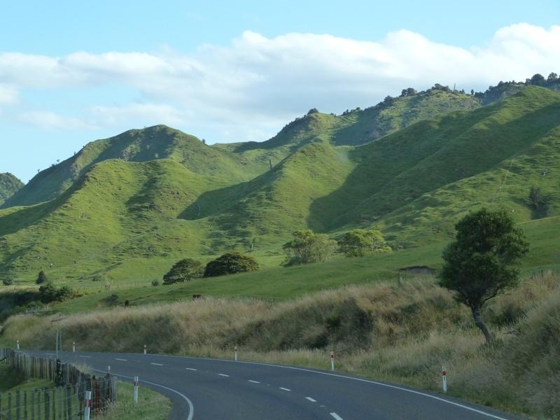 ...ein weiteres Foto unserer Fahrt nach Gisborne