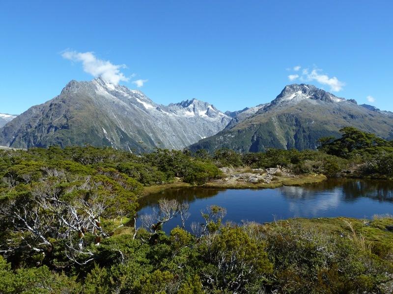 """...kurzer """"Nature Walk"""" im kleinen Naturschutzgebiet am Plateau"""