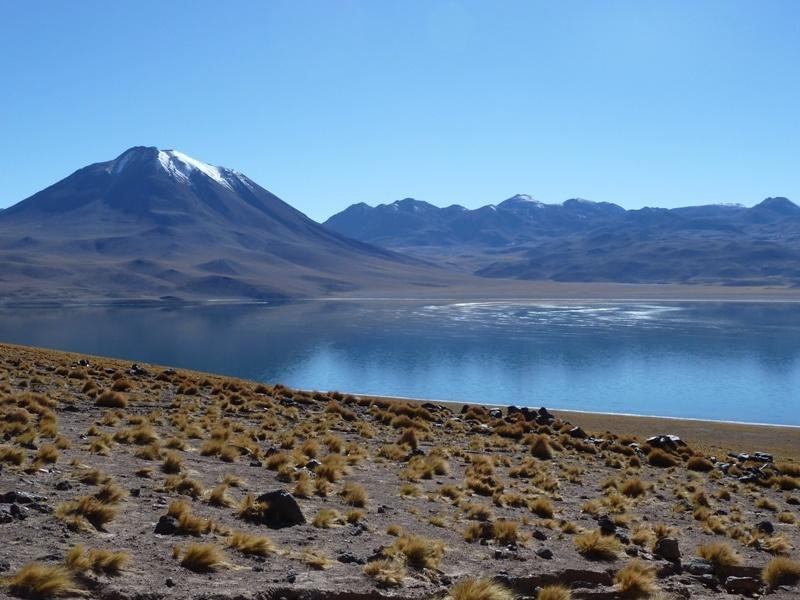 Laguna Miscanti auf 4.300 Meter