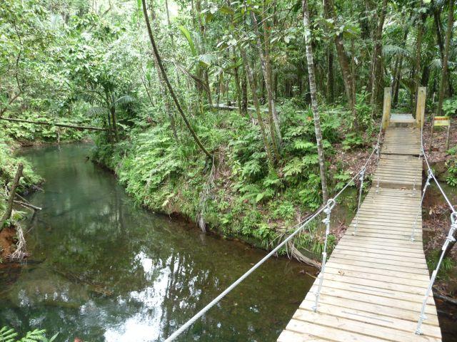 a chain bridge