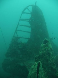 the aircraft tail of the wreck