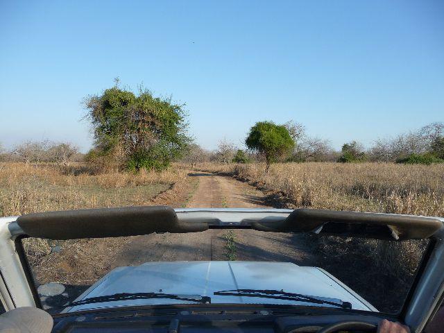 Malawi 2009 004 (2)