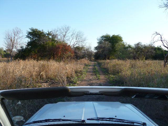 Malawi 2009 006 (2)