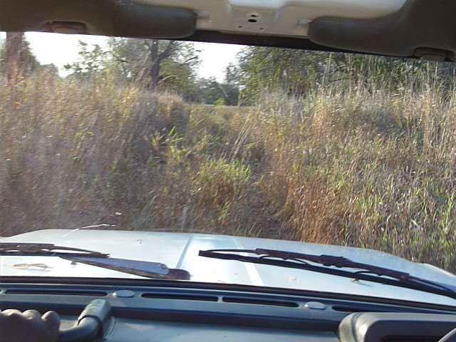 Malawi 2009 007 (2)