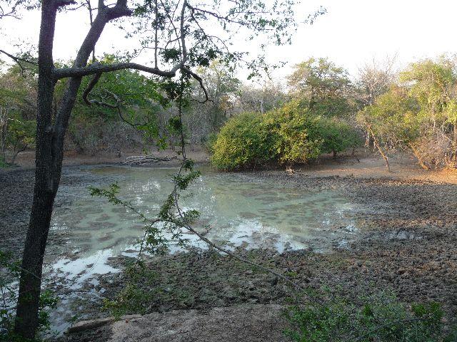 Malawi 2009 017 (2)