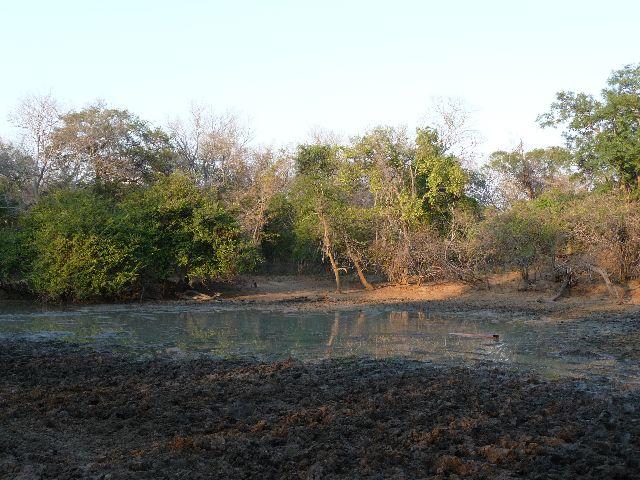 Malawi 2009 020 (3)