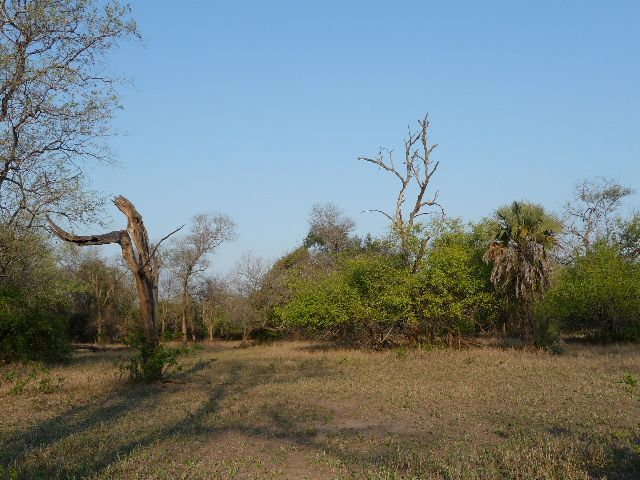 Malawi 2009 025 (2)