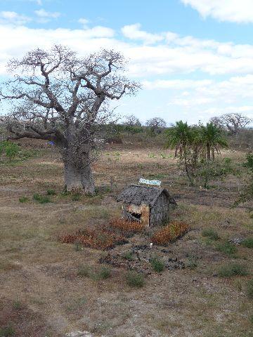 Malawi 2009 057 (2)