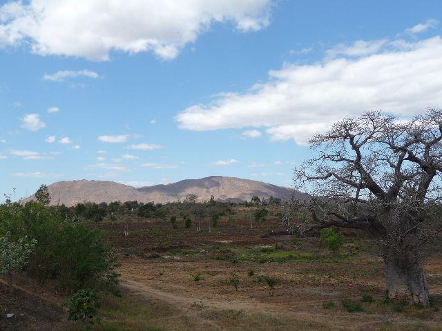 Malawi 2009 064