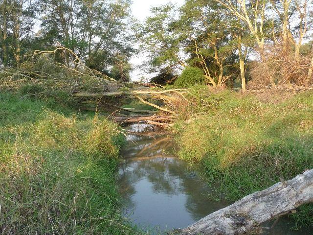 Malawi 2009 071