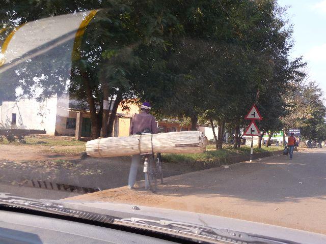Malawi 2009 101 (2)