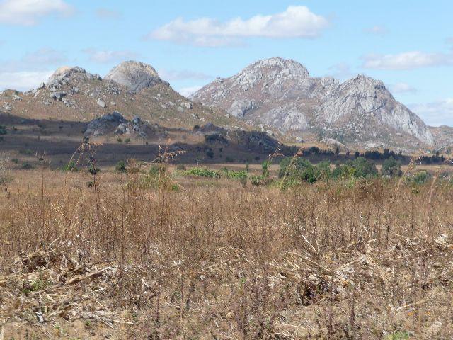 Malawi 2009 108