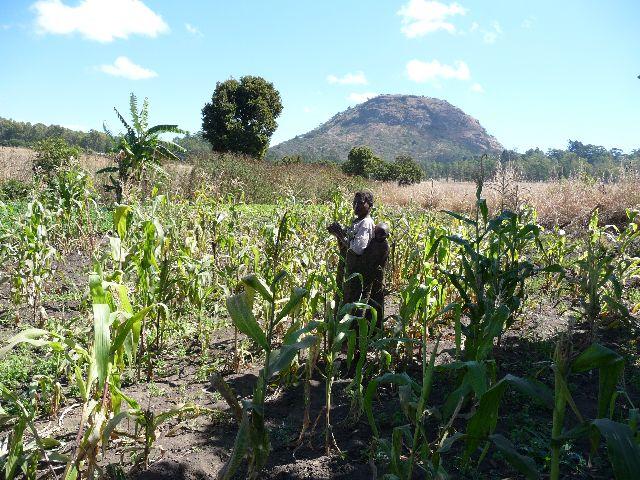 Malawi 2009 109