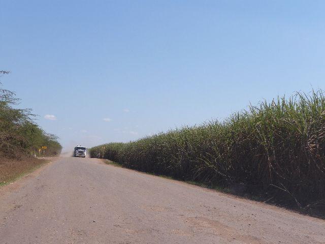 Malawi 2009 121 (2)