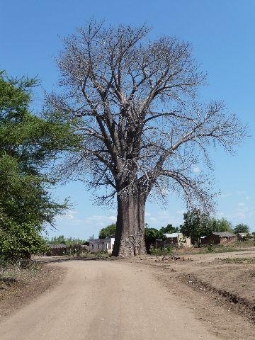 Malawi 2009 125