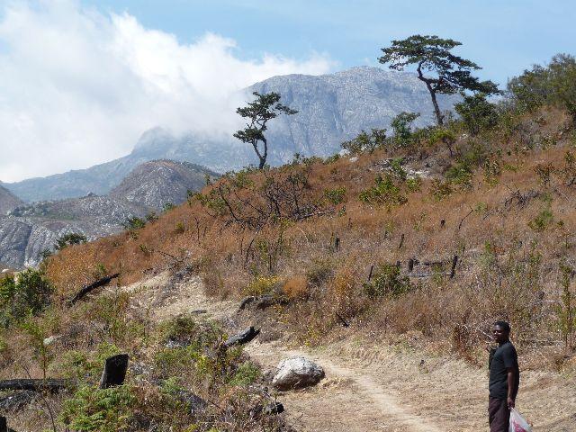 Malawi 2009 128 (3)