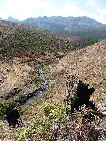 Malawi 2009 129 (2)