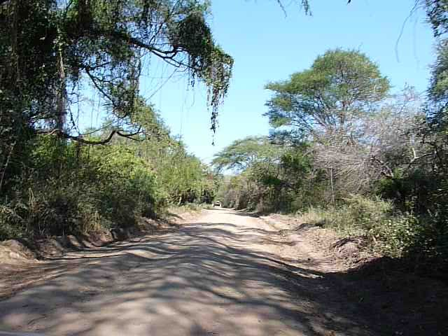 Malawi 2009 132 (2)