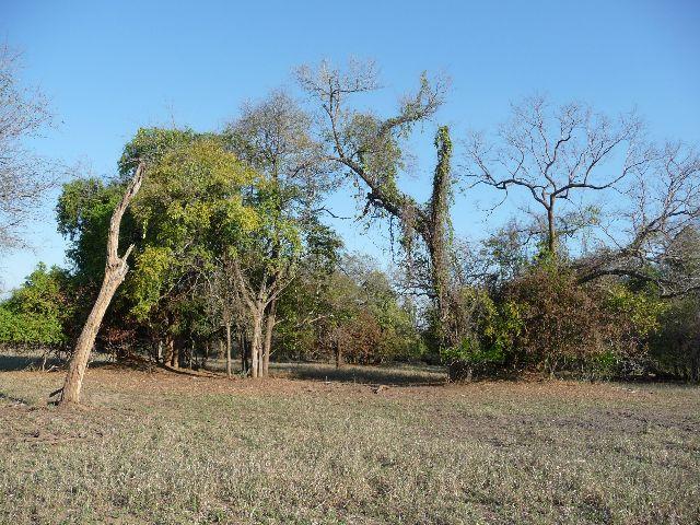 Malawi 2009 145