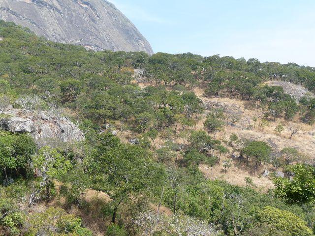 Malawi 2009 151 (2)