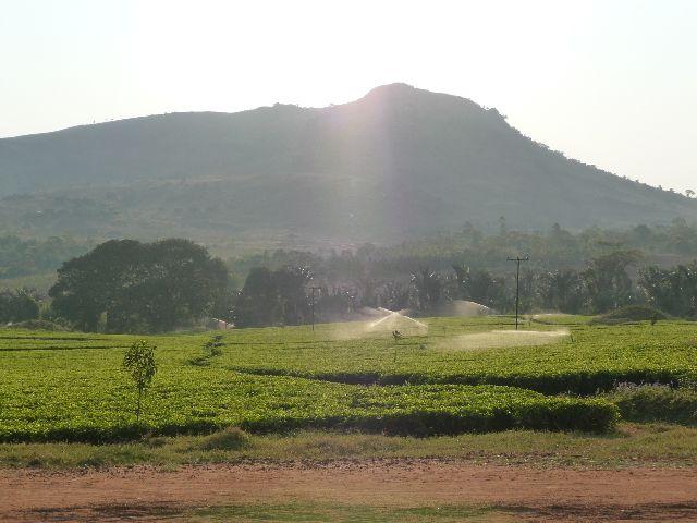 Malawi 2009 174