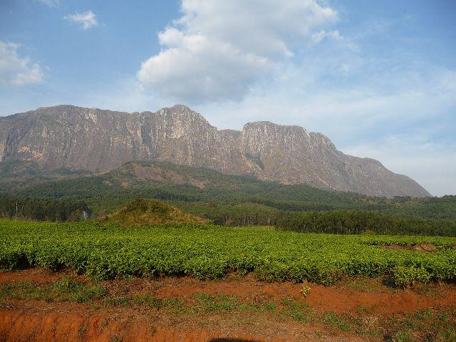 Malawi 2009 175