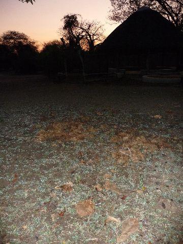 Malawi 2009 221 (2)