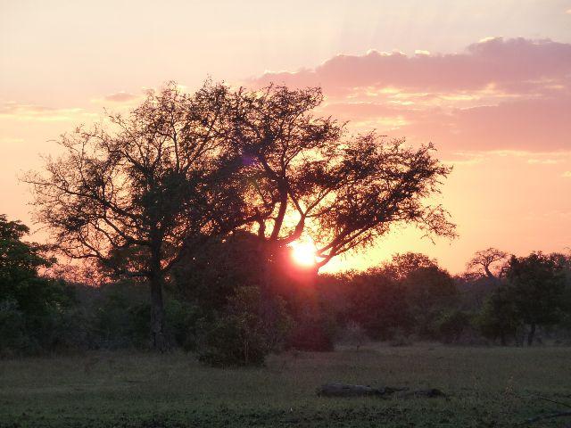 Malawi 2009 227