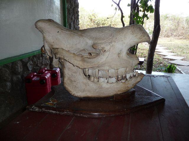 Malawi 2009 248