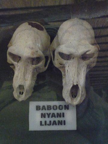 Malawi 2009 249