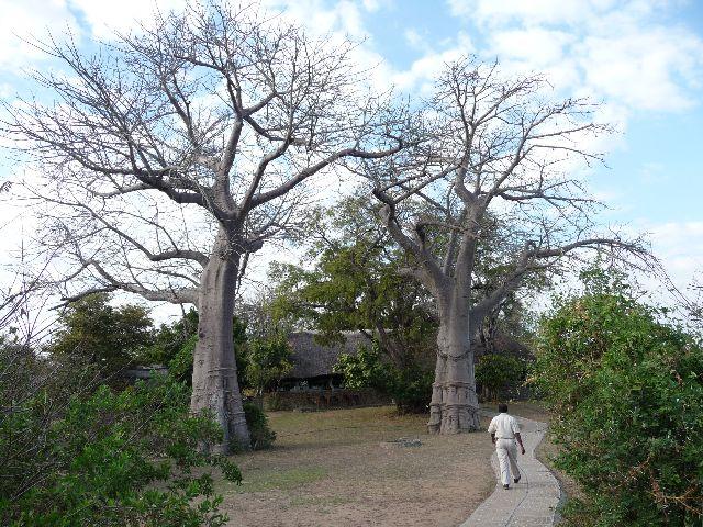 Malawi 2009 255
