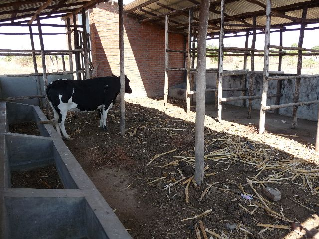 Malawi 2009 270