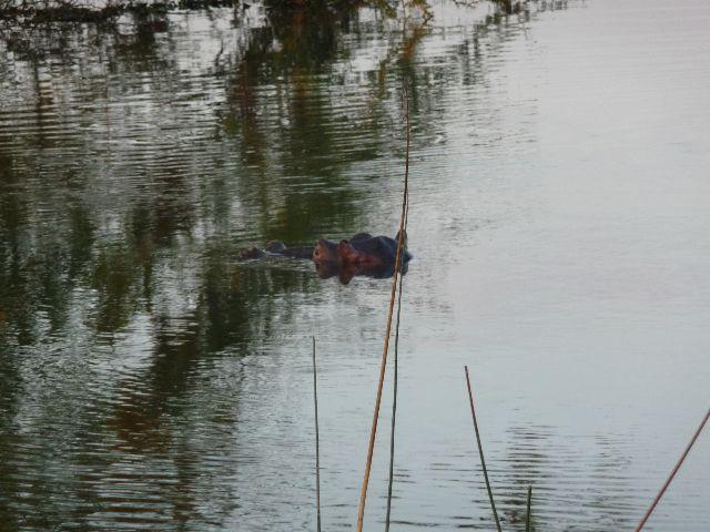 Malawi 2009 306