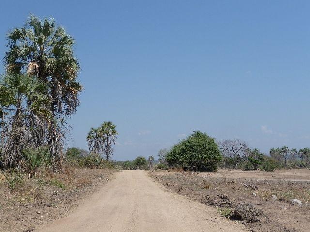 Malawi 2009 310 (2)
