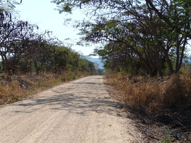 Malawi 2009 346
