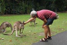 HJ-Känguruh
